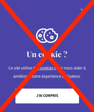Mettre les Cookies de Google Analytics en Conformité avec le RGPD image